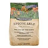 Pennington 397606 Epsom Salt Plant Nutrient, 7 lb