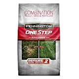Pennington One Step Complete Sun & Shade Bare Spot Grass Seed, 5 Pounds, White