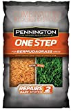 Pennington One Step Complete Bermudagrass Bare Spot Grass Seed, 10 Pounds